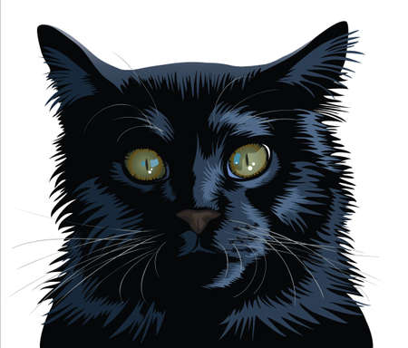 gazing: black cat head isolated. Illustration