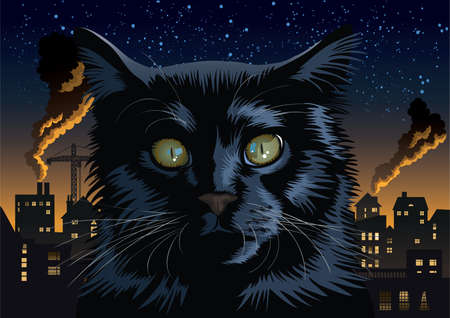 gazing: black cat in an urban, industrial town.