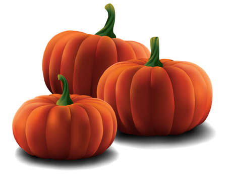 Set of Pumpkins isolated Stok Fotoğraf - 65882666