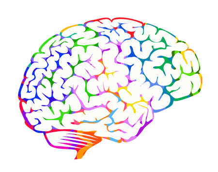 Creative right brain hemisphere