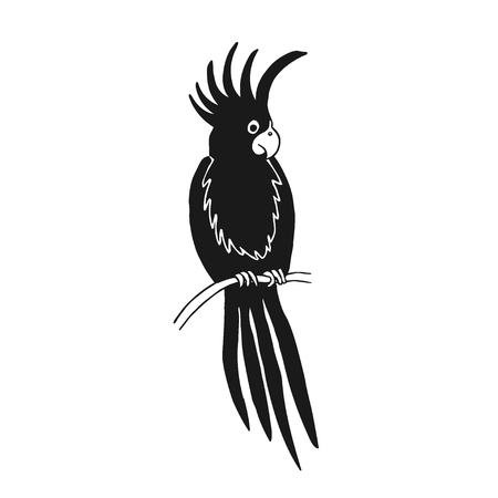 Vector illustration of parrot based on hand draw sketch. Organic contour. Black silhouette isolated on white. Great choice for t-shirt design, infographic, web-design, stickers, banners etc.