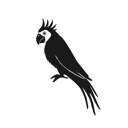domesticated: Vector illustration of parrot based on hand draw sketch. Organic contour. Black silhouette isolated on white. Great choice for t-shirt design, infographic, web-design, stickers, banners etc.
