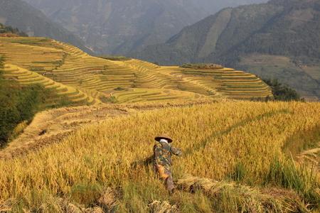 Longji rice terrace ping an, Guangxi, China Stock Photo