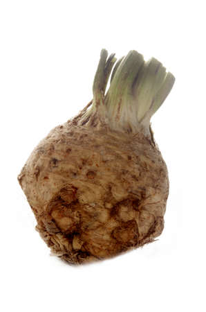 celery root: fresh celery root isolated on white background