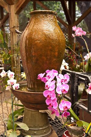water feature: Pink and white orchids growing in garden next to jug water feature. Stock Photo