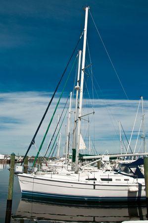 Row of sailboats moored at Bradenton, Florida
