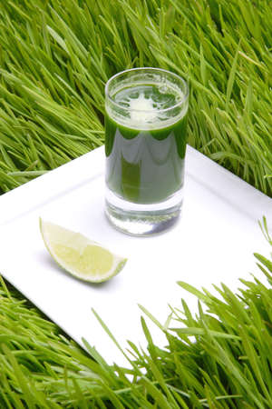 Drink, Wheat Fresh, Fresh Juice from sprout of the wheat