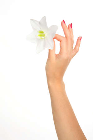 gentile: feminine hand with gentile flower, part of body Stock Photo