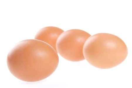 weightless: Egg, Bird, Flight, Soft, Frail, Light, Weightless, Shell, Brown Stock Photo