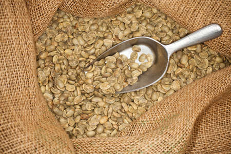 raw coffee beans in a sack