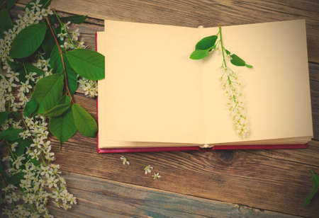 open book with bird-cherry branches on old surface boards. Standard-Bild