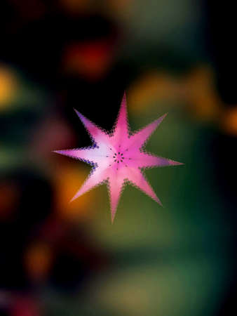 motley: Pink star on a motley background