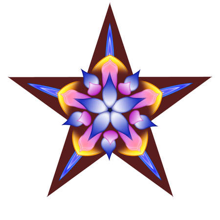 Decorative star with a flower Imagens