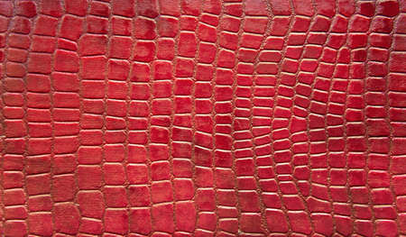 Red crocodile skin texture