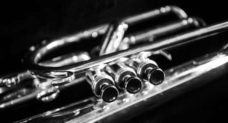 nickle: Three mellophone valves in black and white