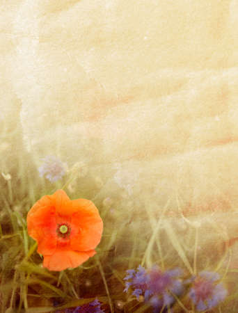 Flower background of poppy, cornflower and paper texture photo