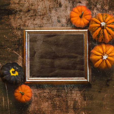Grungy textured halloween frame with five pumpkins Stock Photo