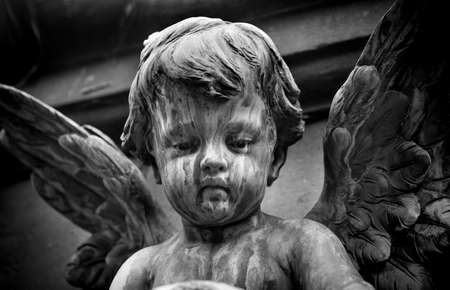 Statue of a baby angel on the graveyard photo