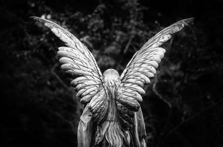 Winged angel gravestone back view in black and white