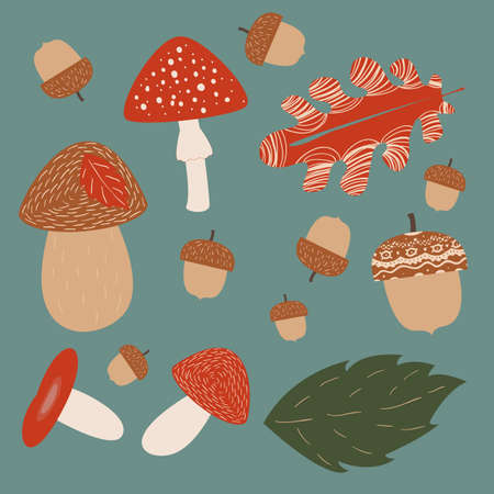 Mushroom hunting vector illustrations on turquoise background in square