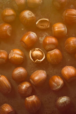 unbroken: Hazelnuts on the table in orange rays of sunlight  orange toning applied  Stock Photo
