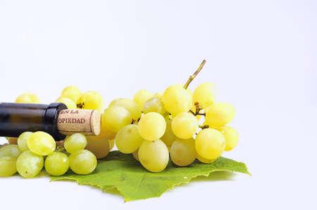 white wine. photo