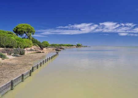 the humanities landscape: Doñana National Park. Stock Photo
