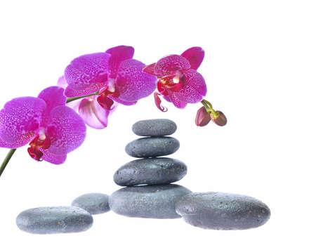 Stone massage. Stock Photo - 10181833