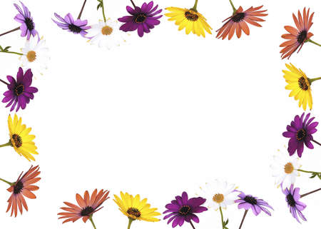 margaritas: Frame with flowers. Stock Photo