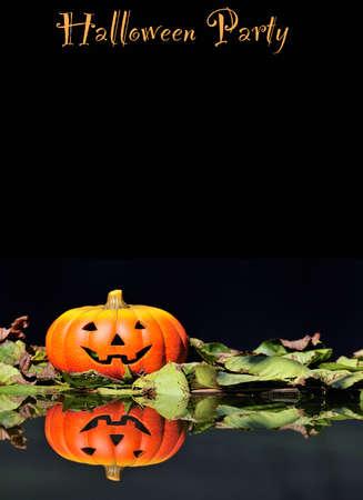 halloween k�rbis: Halloween-K�rbis in den Wald.