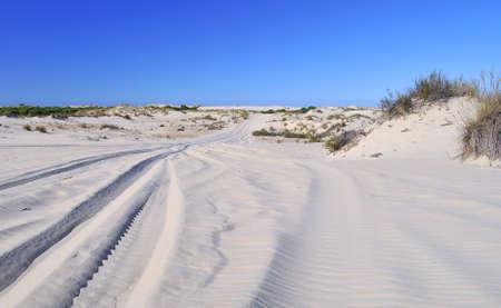sandbank: National Park of Doñana, Andalucia, Spain