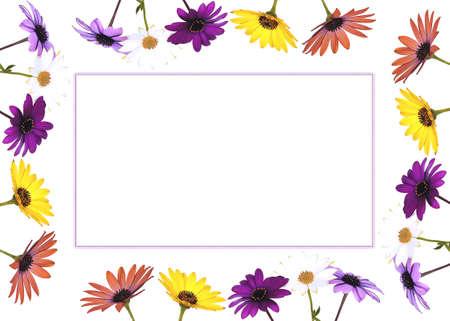 Spring card. photo