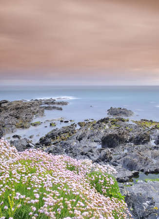 Coastal landscape in spring. photo