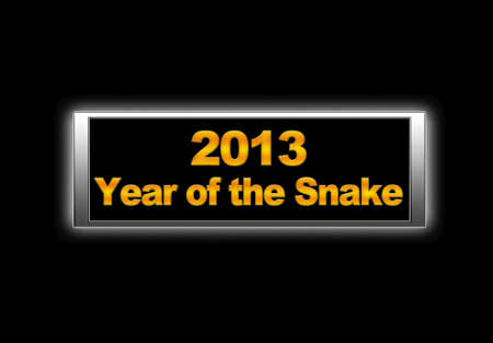 2013, Year of the snake. photo