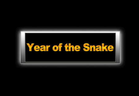 Year of the snake. Stock Photo - 14165306