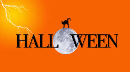 Illustration of halloween with a moon and cat. illustration