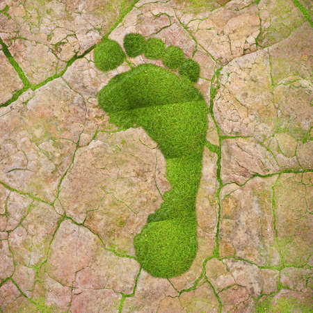 Illustration with a green footprint on dry land  illustration