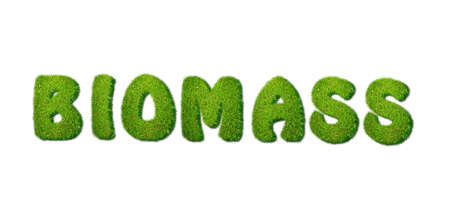 Illustration with biomass grass word on white background Stock Illustration - 16575126