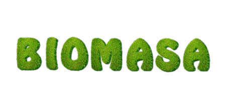 Illustration with biomass grass word on white background Stock Illustration - 16593320