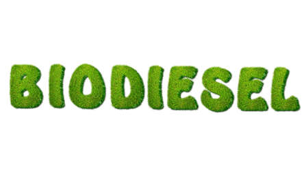 biodiesel: Illustration with biodiesel grass on white background
