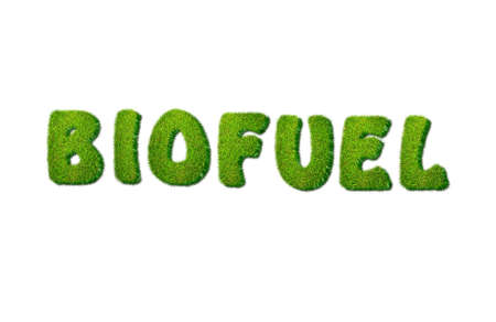 biofuel: Illustration with biofuel grass on white background