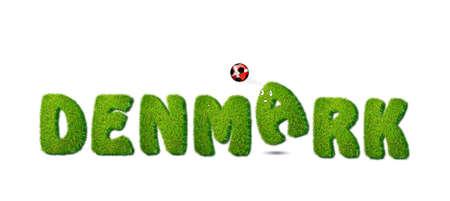 Illustration with Denmark soccer  on white background  illustration