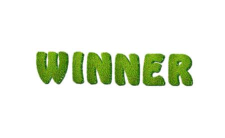 Illustration with winner grass word on white background Stock Illustration - 17325639