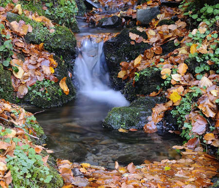 Warerfall on a creek forest in autumn. Stock Photo - 17421632