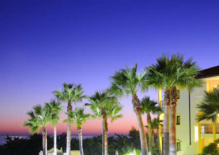 Sunset with palm trees in resort, Cadiz. Stock Photo - 17421685