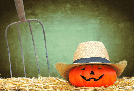 Halloween pumpkin in the farm with green background  photo
