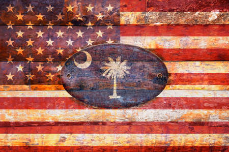 Illustration with a wooden flag of South Carolina 版權商用圖片 - 27908185
