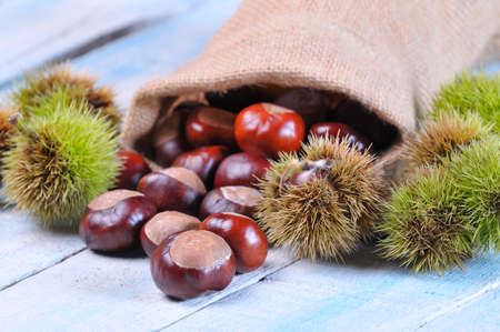 Chestnuts on wooden table in the kitchen. Stock Photo