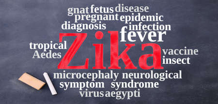 aedes: Blackboard with word cloud on the Zika virus. Stock Photo