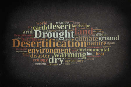 desertification: Blackboard with word cloud about desertification. 3D rendering. Stock Photo